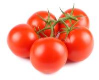 Frische Tomate getrennt auf weißem Hintergrund Abschluss oben lizenzfreie stockfotografie