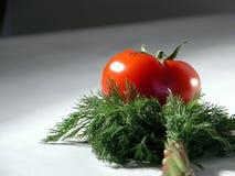 Frische Tomate und Dill 2 stockfotos