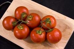 Frische Tomaten Lizenzfreie Stockfotografie