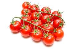 Frische Tomaten auf dem Stiel lizenzfreie stockbilder