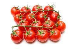 Frische Tomaten auf dem Stiel lizenzfreies stockfoto