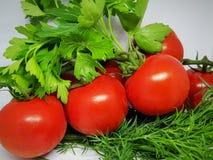 frische Tomaten auf einer Niederlassung umgeben durch Grün stockbild