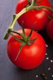 Frische Tomaten auf weißer keramischer Platte Lizenzfreies Stockbild