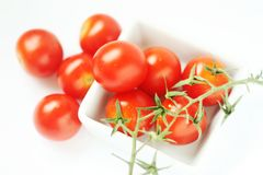 Frische Tomaten in der quadratischen Schüssel Stockbild