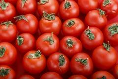 Frische Tomaten Es kann als Hintergrund verwendet werden Selektiver Fokus Lizenzfreies Stockbild