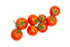 Frische Tomaten getrennt auf Weiß Lizenzfreie Stockfotografie