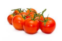 Frische Tomaten getrennt auf Weiß Lizenzfreie Stockbilder