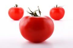 Frische Tomaten getrennt auf Weiß Stockbilder