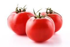 Frische Tomaten getrennt auf Weiß Stockfoto