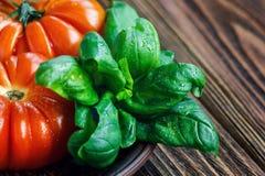 Frische Tomaten mit Basilikum für Gebrauch, wie, Bestandteile mit Kopienraum kochend Tomaten mit Basilikum auf Holztischhintergru Lizenzfreie Stockfotos