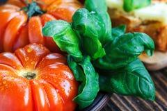 Frische Tomaten mit Basilikum für Gebrauch, wie, Bestandteile mit Kopienraum kochend Tomaten mit Basilikum auf Holztischhintergru Lizenzfreie Stockbilder