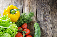 Frische Tomaten mit Salat Stockbild
