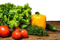 Frische Tomaten mit Salat Stockfotografie