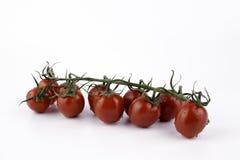Frische Tomaten mit Tropfen des Wassers Lizenzfreies Stockbild