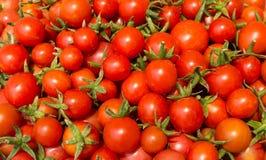 Frische Tomaten Rot Lebensmittel und Vitamine Gesundheit und Sch?nheit lizenzfreies stockfoto