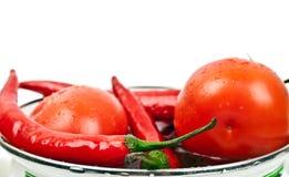 Frische Tomaten und heiße Pfeffer Stockfotografie