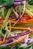 Frische Tomaten und Zucchini Stockbilder