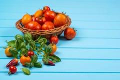 Frische Tomaten und Zucchini Frische Pfeffer, Tomaten, Basilikum auf blauem hölzernem Hintergrund Lizenzfreie Stockfotos