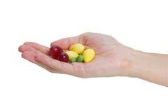 Frische Trauben, Ginkgo und Erbsen. Stockbild