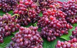 Frische Trauben purpurrot im lokalen Markt stockbilder