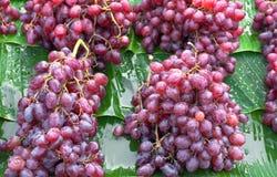 Frische Trauben purpurrot im lokalen Markt lizenzfreie stockfotos