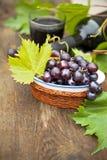 Frische Trauben und Flaschen Wein lizenzfreie stockfotografie