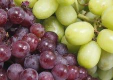 Frische Traubenfrucht Lizenzfreies Stockfoto