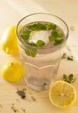 Frische und abkühlende Limonade mit Minze Stockbilder