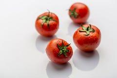 Frische und reife rote Tomaten Lizenzfreie Stockbilder