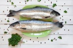 Frische ungekochte Lachse auf grüner Platte mit Petersilie und Erbsen Lizenzfreie Stockbilder