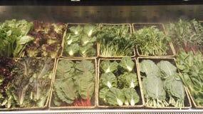 frische vegetable Lizenzfreie Stockfotografie