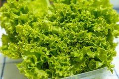 frische vegetable stockbilder