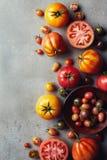 Frische verschiedene bunte Tomaten stockfotos