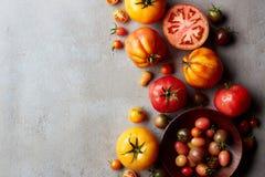 Frische verschiedene bunte Tomaten stockbilder