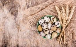 Frische Wachteleier und Ohren des Weizens auf hölzernem Brett Organische Produkte Stockfoto