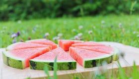 Frische Wassermelone Lizenzfreie Stockfotografie