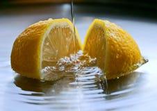 Frische Zitrone lizenzfreie stockbilder