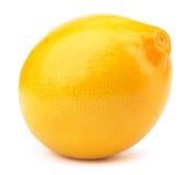 Frische Zitrone getrennt Stockbilder
