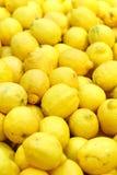 Frische Zitrone im Supermarkt Stockbilder