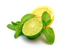 Frische Zitrone, Kalk und Minze lizenzfreie stockbilder