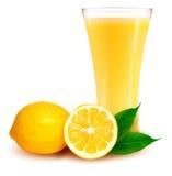 Frische Zitrone und Glas mit Saft lizenzfreie abbildung