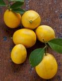 Frische Zitronen Stockfoto