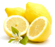 Frische Zitronen Lizenzfreie Stockfotografie