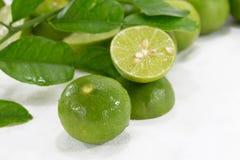 Frische Zitronen auf weißem Hintergrund Lizenzfreie Stockbilder