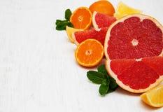 Frische Zitrusfrüchte mit grüner Minze stockfotografie