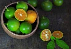 Frische Zitrusfrucht calamondin Frucht Lizenzfreies Stockfoto