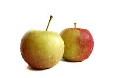 Frische zwei Äpfel mit Wassertröpfchen Lizenzfreies Stockfoto
