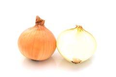 Frische Zwiebel auf weißem Hintergrund Stockbild