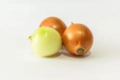Frische Zwiebeln auf Weiß Lizenzfreies Stockbild