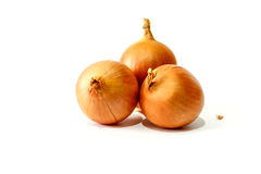 Frische Zwiebeln auf Weiß Stockfotografie